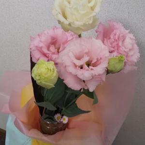 切り花にダイソー100均切り花長持ちで切り花が咲き、10日間お花を楽しめました。