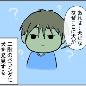 【オカルト注意】息子、幽霊を見るの巻【前編】