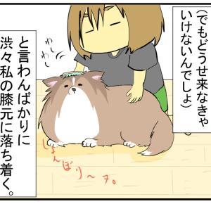 【犬の】時々彼女が分からなくなる【気持ち】