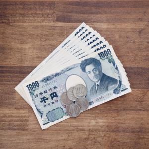 今月のこり8500円。家計簿中締め的イベント「お財布の中身おまとめしました」