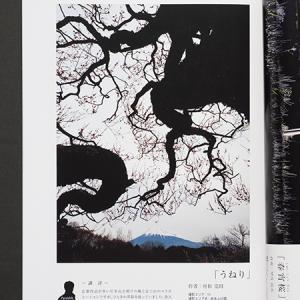 富士山百景コンテスト公式ガイドブック2021