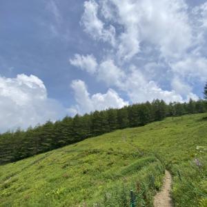 久々の山旅は、入笠山のマナスル山荘へ