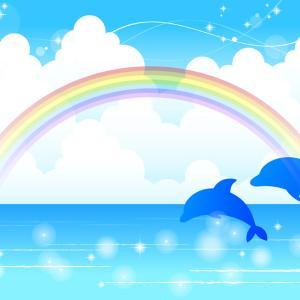 GoToキャンペーン東京対象外 御蔵島「野生のイルカと泳ぎたい」