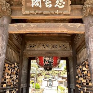 王子神社・萬満寺-重要文化財「仁王様の股くぐり」が有名なお寺 千葉県・松戸(馬橋)