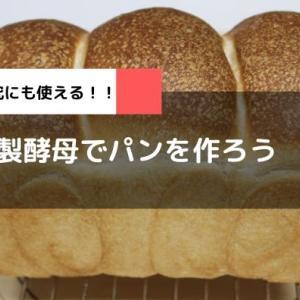 自家製酵母でパンを焼こう 元種作り~パン作り
