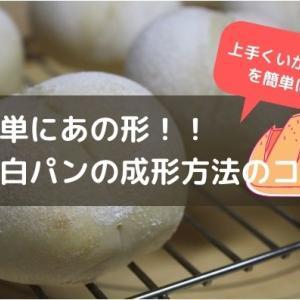 【初心者向け】白パンを上手に作るコツ