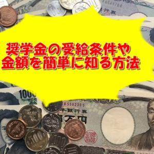 【高校生・大学生必見】奨学金の受給条件や金額を簡単に知る方法