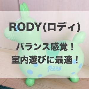 RODY(ロディ)は室内の全身運動に最適!プレゼントにもおすすめ