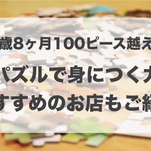 ジグソーパズル2歳で100ピース以上完成!パズルで身につく力は?