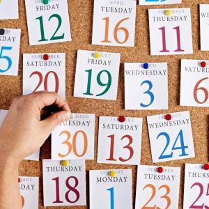 【国内日本語教師の1年】忙しい時期や入試時期なども説明
