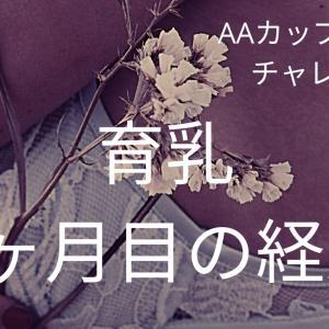 【バストアップ経過報告】6ヶ月目