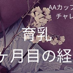 【バストアップ経過報告】7ヶ月目