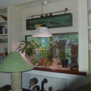 Plant upbringing lamp