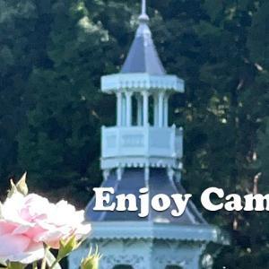 1年ぶりの河津バガテル公園で秋バラ鑑賞&芳香を楽しむ~ご当地グルメ「向山」のカツカレーランチ