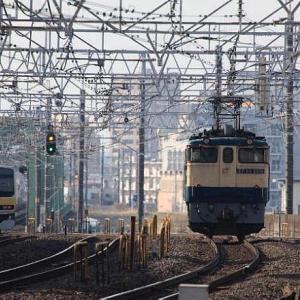 EF65 電気機関車 単機回送です。