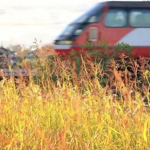 11/18 WED. 名古屋鉄道 いつもの鉄橋です。
