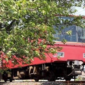 緑の中を駆け抜けていく、真っ赤な電車~。