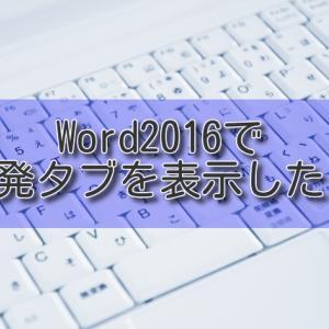 Word2016で開発タブを表示したい【Office365】
