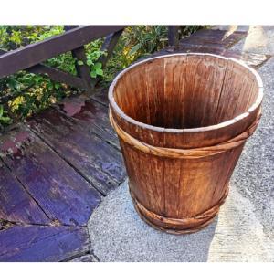 【アクアリウム】水槽掃除で出た汚れはバケツに溜めています