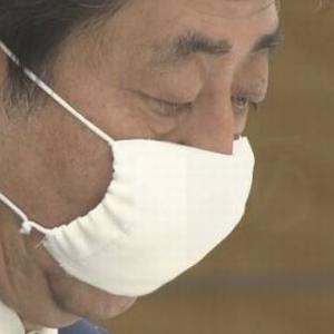 【超悲報】「アベノマスク」使用は3.5% 民間意識調査