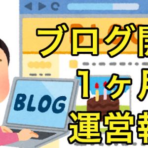 【ブログ運営報告】ブログ初心者の開始1ヶ月のアクセス、記事数などのまとめ!