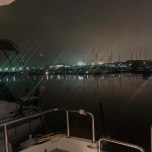 ベイサイドマリーナで梅雨入りの夜に
