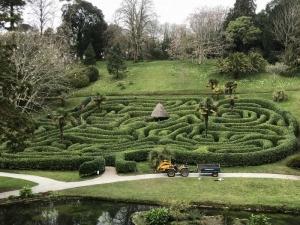 迷路に挑戦! グレンデューガン・ガーデン Glendurgan Garden