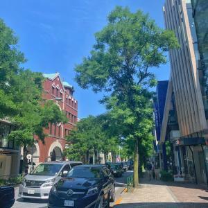 歩くだけで楽しい♡ドレスフレイア南青山までの道のり from 表参道駅