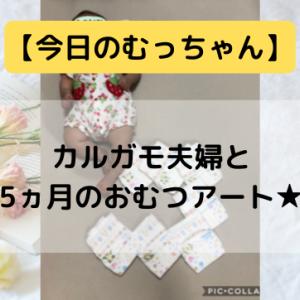 【今日のむっちゃん】カルガモ夫婦と5ヵ月のおむつアート★