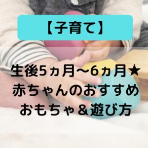 【子育て】生後5ヵ月~6ヵ月★赤ちゃんのおすすめおもちゃ&遊び方