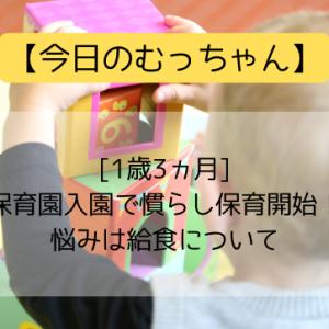 【今日のむっちゃん】[1歳3ヵ月]保育園入園で慣らし保育開始!悩みは給食について
