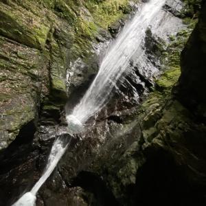 蜻蛉の滝からハイキングと本日の株取引