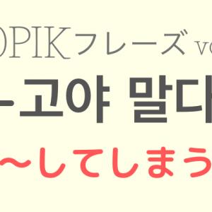 TOPIKⅡ対策 vol.24【-고야 말다 〜してしまう】