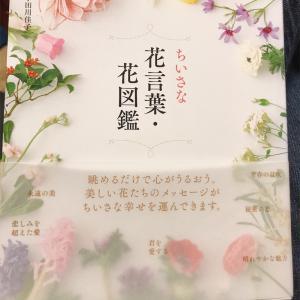 花言葉・花図鑑の本を初めて買ってみました