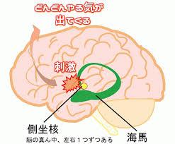 """【作業興奮】めんどくさい部屋の掃除は""""脳""""のこの作用を活用すればいいんじゃない?というお話"""