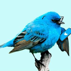たぐち君のTwitterに関して一言言わせてください