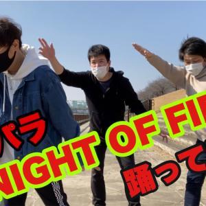 【パラパラ】☆NIGHT OF FIRE踊ってみました。