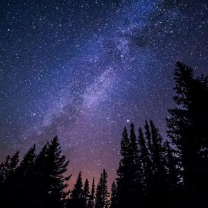 流れ星を見つけるコツは、○○を楽しむコツと同じ!