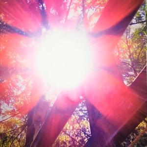 陽極まる夏至に向け、太陽のエネルギーをチャージ!