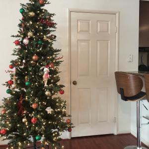 クリスマスツリー選びで重視したこと