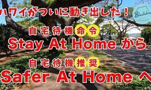 【コロナショック】ハワイがついに動き出した!【Safer At Home 自宅待機推奨】