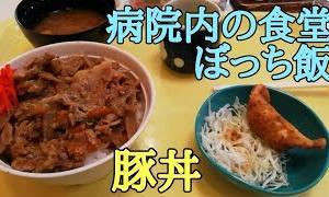外でぼっち飯 病院の食堂で豚丼 / 新居関所をぶらり散歩 Vlog