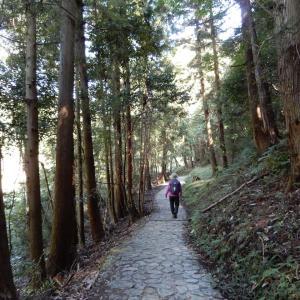 秋 山の辺の道  2020.1104