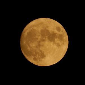 8年ぶりの中秋の名月の満月と彼岸花  2021.0923