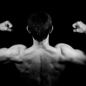 「骨と筋肉・人の誕生」の単元(小5理科)