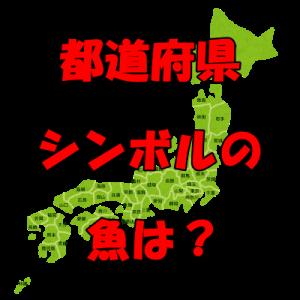 都道府県のシンボル魚(県魚)って知ってる?地域にゆかりのある魚。