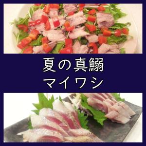 旬のマイワシ(真鰯)で料理2品。寝かせ刺身と湯煮サラダ!(レシピ)