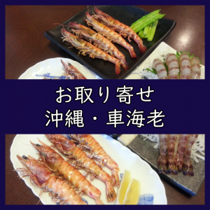 レポート!食べチョクで「沖縄・久米島の車海老」を取り寄せました!(レビュー/口コミ)