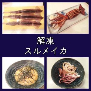 解凍スルメイカで作るイカ焼き・刺身・一夜干し(レシピ/食べ方)