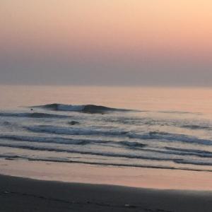 波と地形の関係性